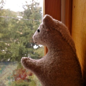 Gray Bear Looks out the Window